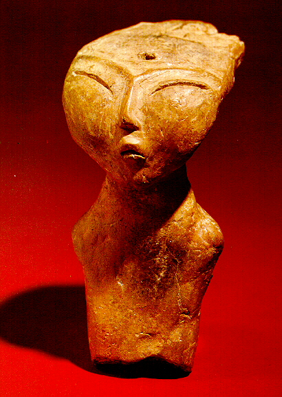 Nefertiti of the Amur 2